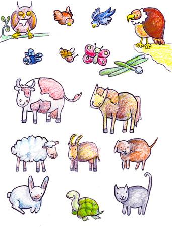 illustrateur-livre-jeunesse-illustration