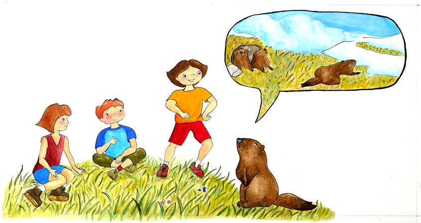 illustrateur-livre-jeunesse