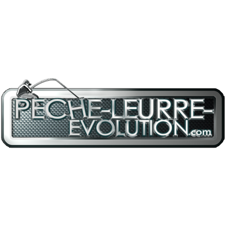 graphiste-illustrateur-web-edition-print-logos-peche-leurre-evolution